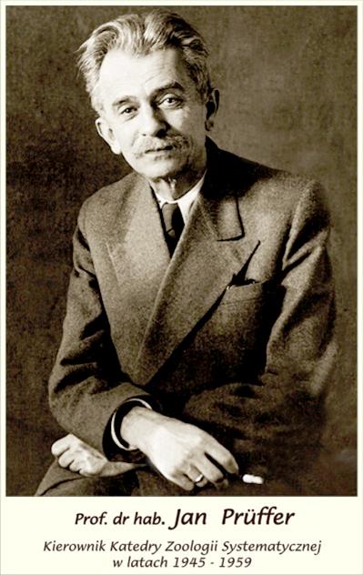 Jan Prüffer